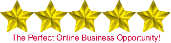 online business opportunity, business opportunity